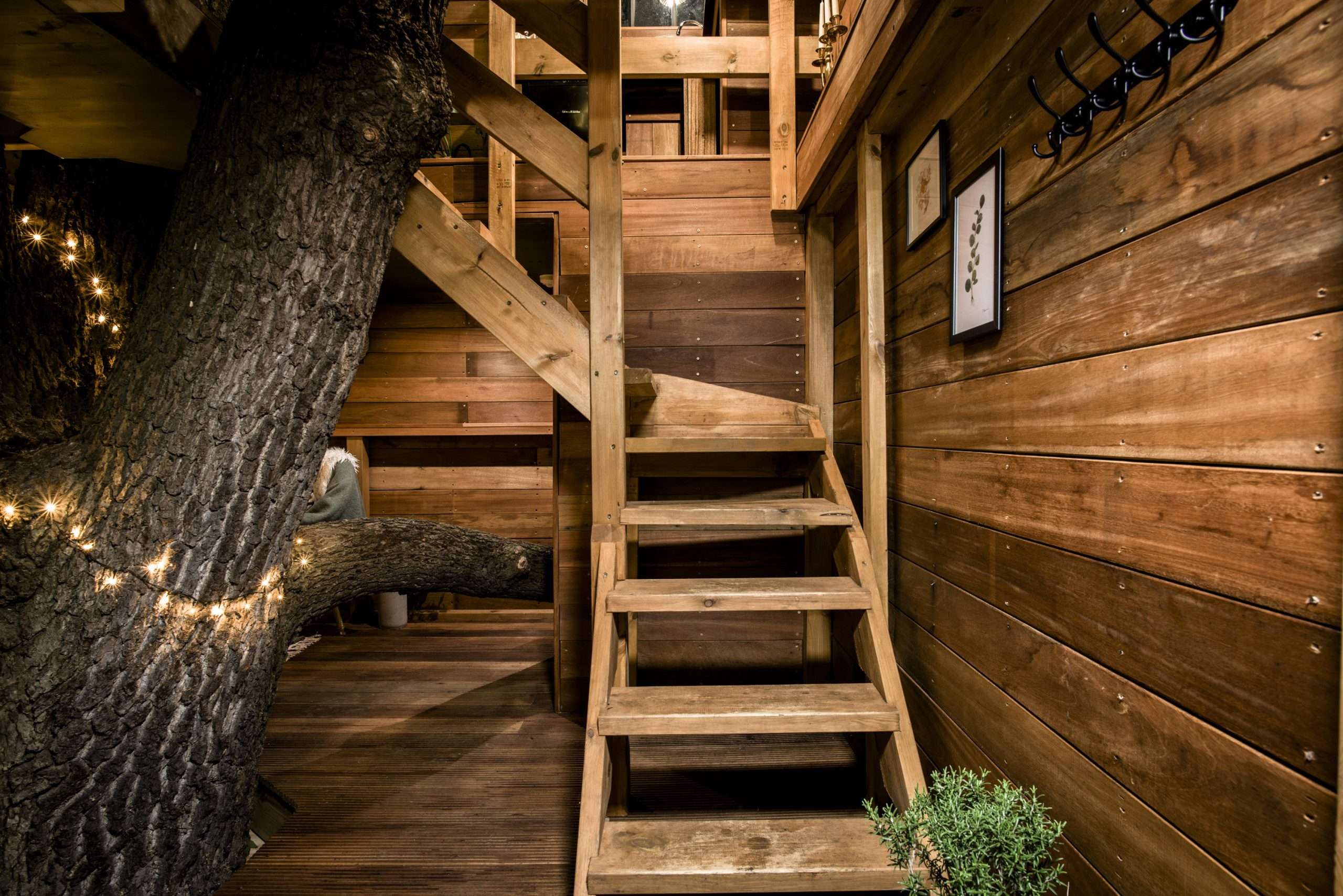 The stairs in The Old Oak at Colemans leading up to the 1st floor