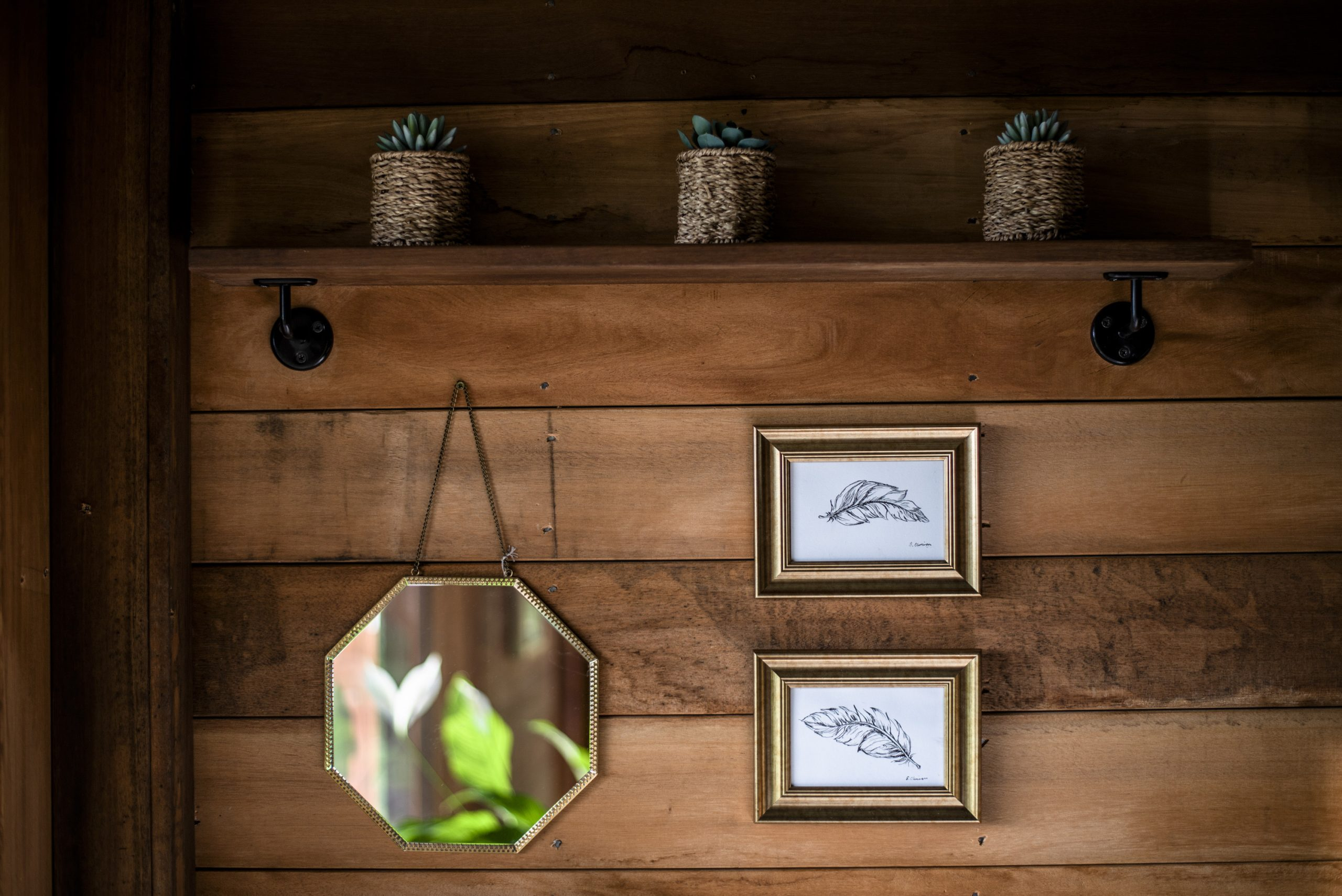 Closeup photo of the cedar cladding, shelf with succulent plants, illustrations and mirror in The Old Oak at Colemans Farm