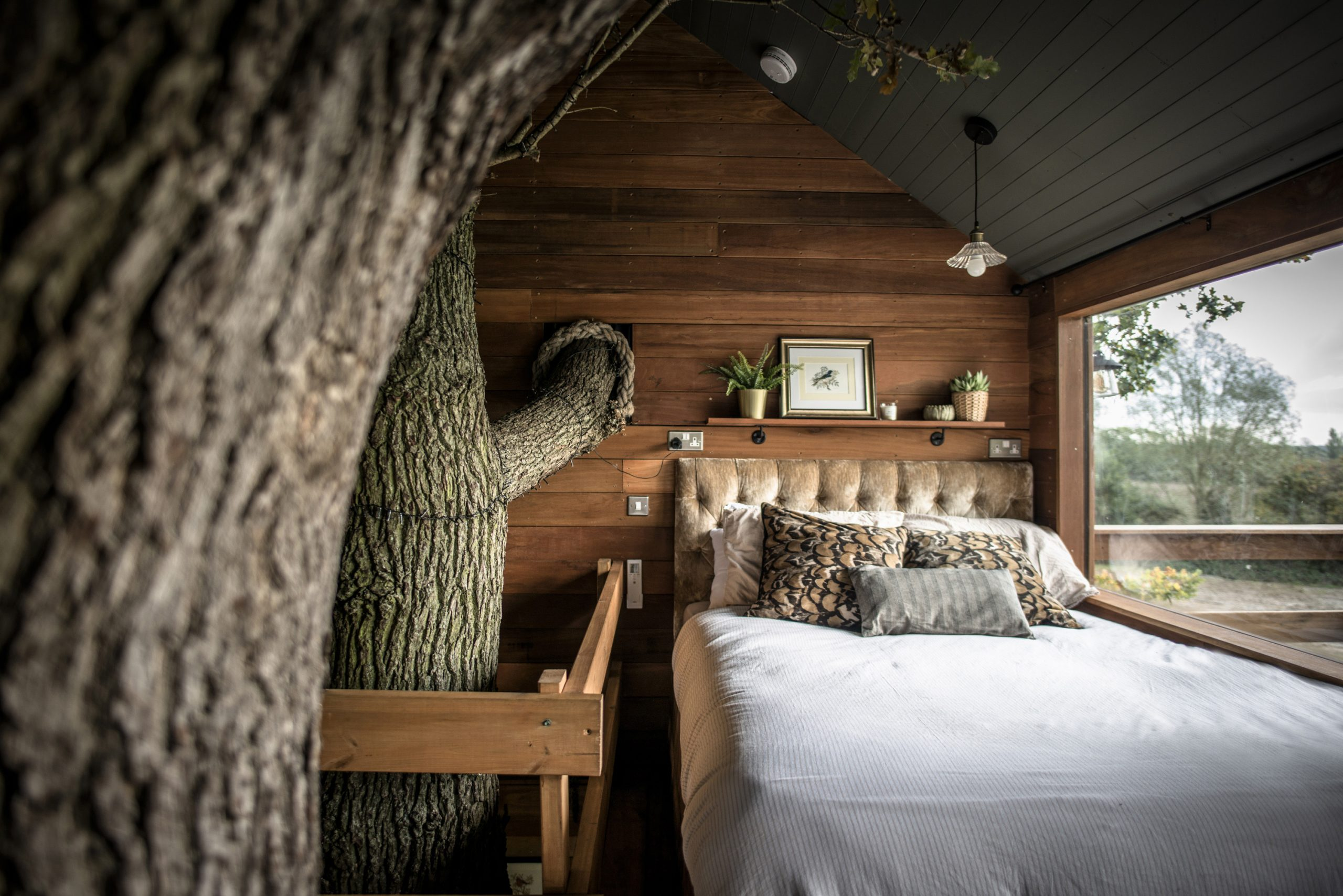 Sleeping area with panoramic window inside The Old Oak at Colemans Farm